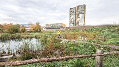 Biotope wie in der Luzerner Allmend soll es gemäss dem Luzerner Regierungsrat im Kanton mehr geben. (Bild: Roger Grütter, 16. November 2018)