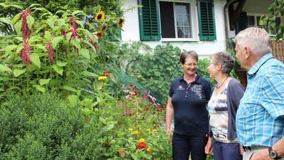 Das Ehepaar Angst (rechts) fachsimpelt in ihrem Garten mit den Besuchern. (Bild: Manuela Olgiati)