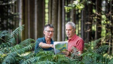 Revierförster Walter Bicker und Regionalförster Raphael Lüchinger beschäftigen sich mit dem Wald der Zukunft. Bilder: Michel Canonica