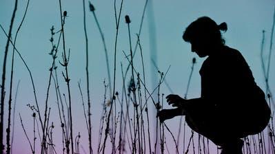 Wie im Märchen: Im Kunstraum Kreuzlingen baut Ursula Palla für dieDoppelausstellung ihre Installation «empty garden» auf. (Bild: Donato Caspari)
