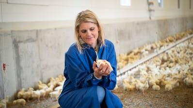 Irene Räss ist für 9000 Masthühner zuständig. (Bild: Ralph Ribi)