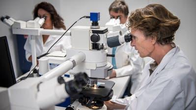 Achim Fleischmann stellt bei der histologischen Untersuchung von Gewebeproben mit seinen Kollegen eine Diagnose auf. (Bild: Reto Martin)
