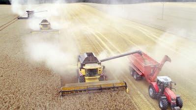 Die Landwirtschaft muss laut dem Weltklimarat umweltfreundlicher werden. (Bild: Bernd Wüstneck/DPA /Neubukow, 5. August 2019)