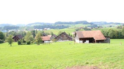 Blick in Richtung Westen auf Oetschwil. Im Haus in der Bildmitte befand sich einst eine Gastwirtschaft. Im Hintergrund sieht man die Häuser des Weilers Engi (rechts) und des Dorfes Bütschwil. (Bild: Martin Knoepfel)
