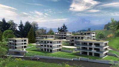 Das geplante Neubauprojekt «Sonnhaldenpark» in Kastanienbaum/Horw. (Visualisierung: PD)