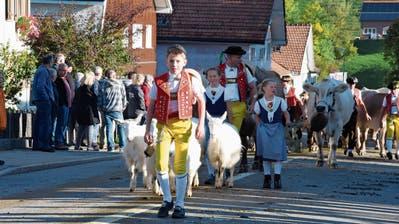 In Heiden ist auch an der diesjährigen Viehschau eine sennische Auffuhr durchs Dorf geplant. (Bild: APZ)