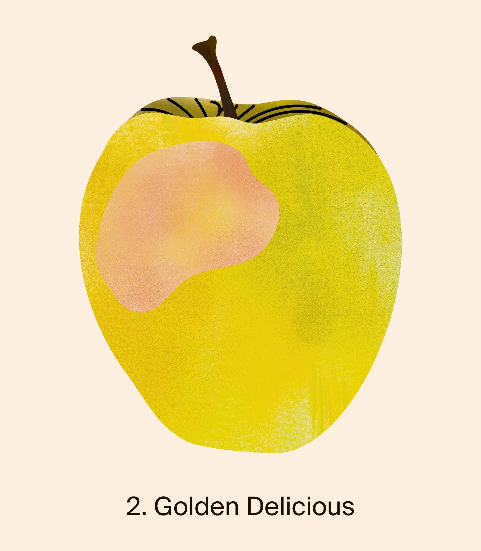 Auf Platz zwei waren letztes Jahr Golden Delicious-Äpfel mit 24 290 Tonnen. Quelle: Naturmuseum St. Gallen