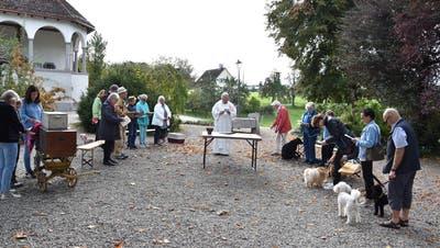 Der Tiersegnungs-Gottesdienstmit Pater Peter Suffel im Freien berührt Jung und Alt gleichermassen. (Bild: Freddy Kugler)