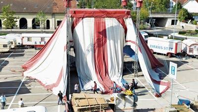 Fürs Zelt des Zirkus Stey in Frauenfeld packen selbst die Artisten an