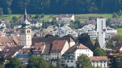 Blick auf die Bischofszeller Altstadt mit der Stiftskirche St.Pelagius und der evangelischen Johanneskirche. (Bild: Donato Caspari)