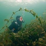 Ein Selbstversuch im Tauchen: Lisa Wickart bei ihrem ersten Tauchgang im Bodensee. (Bild: Richard Schröter)