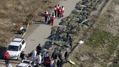 Die abgestürzte Boeing 737-800 UR-PSR der Ukraine International Airlines am internationalen Flughafen von Kiew. Archivbild. (Bild: Oleg Belyakov)