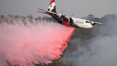 Ein Löschflugzeug versucht aus der Luft in Penrose die Flammen zu löschen. (Bild: Dan Himbrechts / Keystone / EPA)