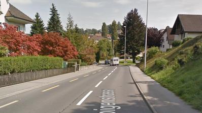 Ruopigenstrasse: Hier will der Stadtrat Tempo 30 einführen. (Bild: Google Maps)