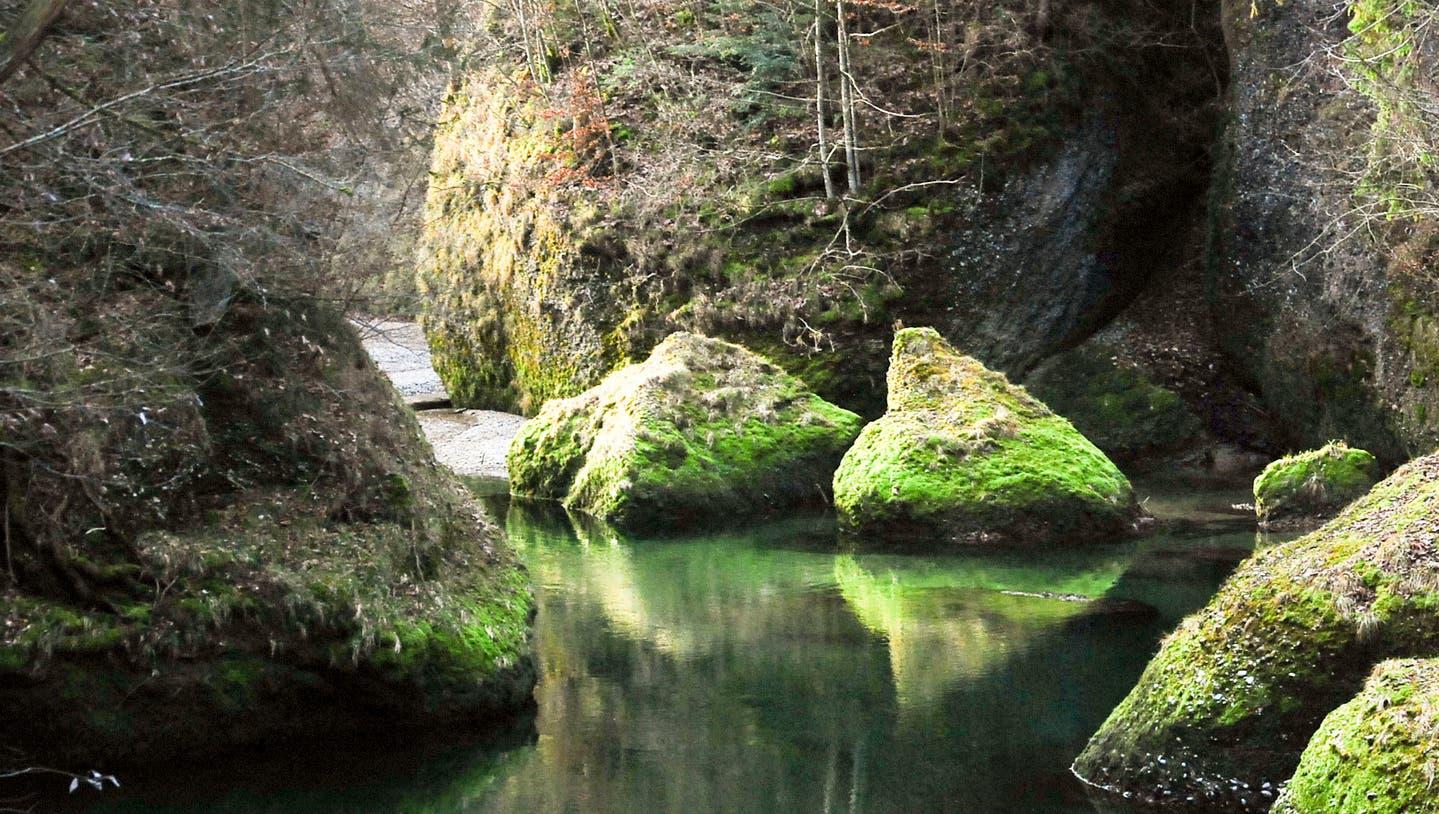 Wandertipp:Dem Lauf  der Thur entlang
