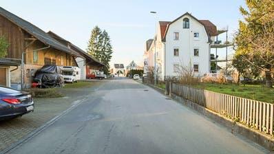 Anstelle der Agrarbauten (links) will die IG Horn keine wuchtigen Wohnhäuser. (Rudolf Hirtl)