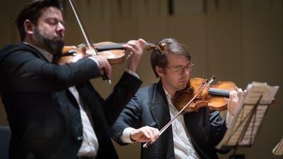 Jeder Ton ein Genuss: Das Stradivari-Sextett bereitet sich auf das Meisterzyklus-Konzert in der Tonhalle vor. Bild: Benjamin Manser
