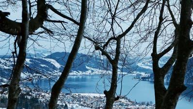 Ägerital: Die Mitwirkung zur Revision der Ortsplanung der beiden Gemeinden geht getrennt weiter