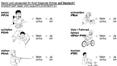 Ausschnitt aus dem Fragebogen mit Übersetzungen inTigrinya. Den Fragebogen gibt es in zwölf Sprachen. (Quelle: PD/Stadt Luzern)