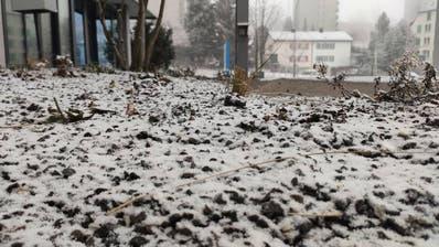 Die Stadt St.Gallen ist weiss gezuckert – doch es ist gar kein Schnee