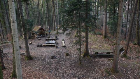Zum Naturerlebnisraum im Kirchberger Altbachwald gehört ein Familien-Grillplatz, der besonders in den Sommermonaten rege genutzt wird. (Bild: Beat Lanzendorfer)