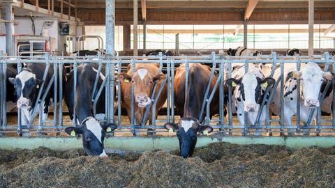 Ausserrhoder Regierung will sechs Kommissionen auflösen++Landwirte bangen um Einfluss