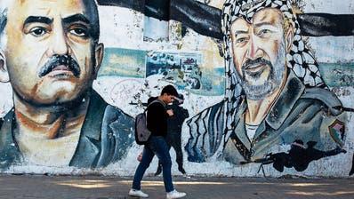 5 Gründe, warum die Palästinenser selber für ihr Schicksal verantwortlich sind
