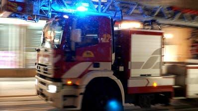 300 Tiere kommen bei Brand in Schweinestall in Brüel SG ums Leben