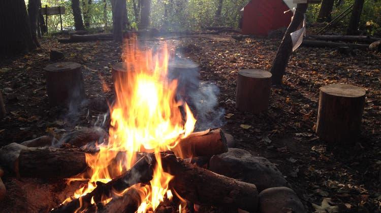 Grillieren im Wald auf festen Feuerstellen ist wieder erlaubt