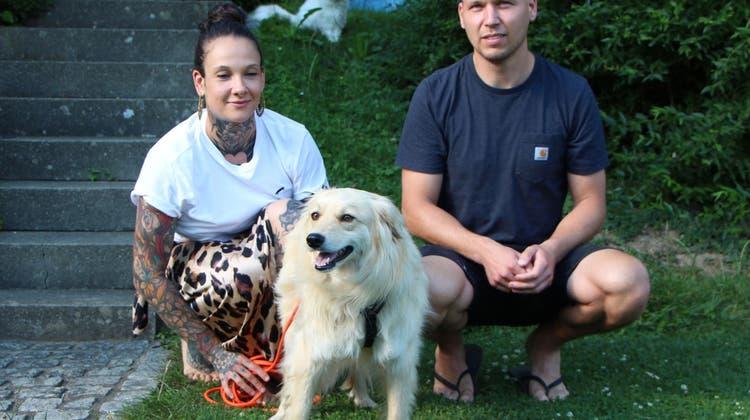 Sie hatten die Hoffnung schon aufgegeben: Aargauer Paar bangt sechs Tage um vermissten Hund
