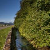 Der Dünnern-«Kanal» soll wieder ein Bach werden