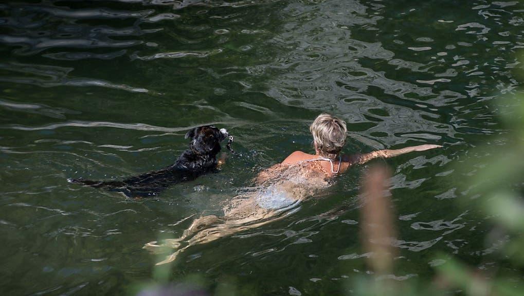 Schlechte Nachrichten für Wasserratten: Winterthur bekommt keine Flussbadi am Mattenbach