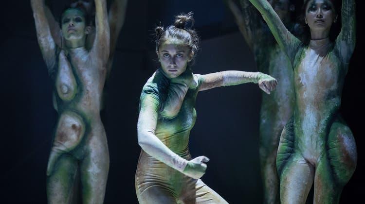 Jedes Wesen in Nadav Zelners Tanzstück «Zendijwa» ist ein Unikum, pflanzenhaft schön, schillernd zwischen Tier und Mensch. (Bild: Gregory Batardon)