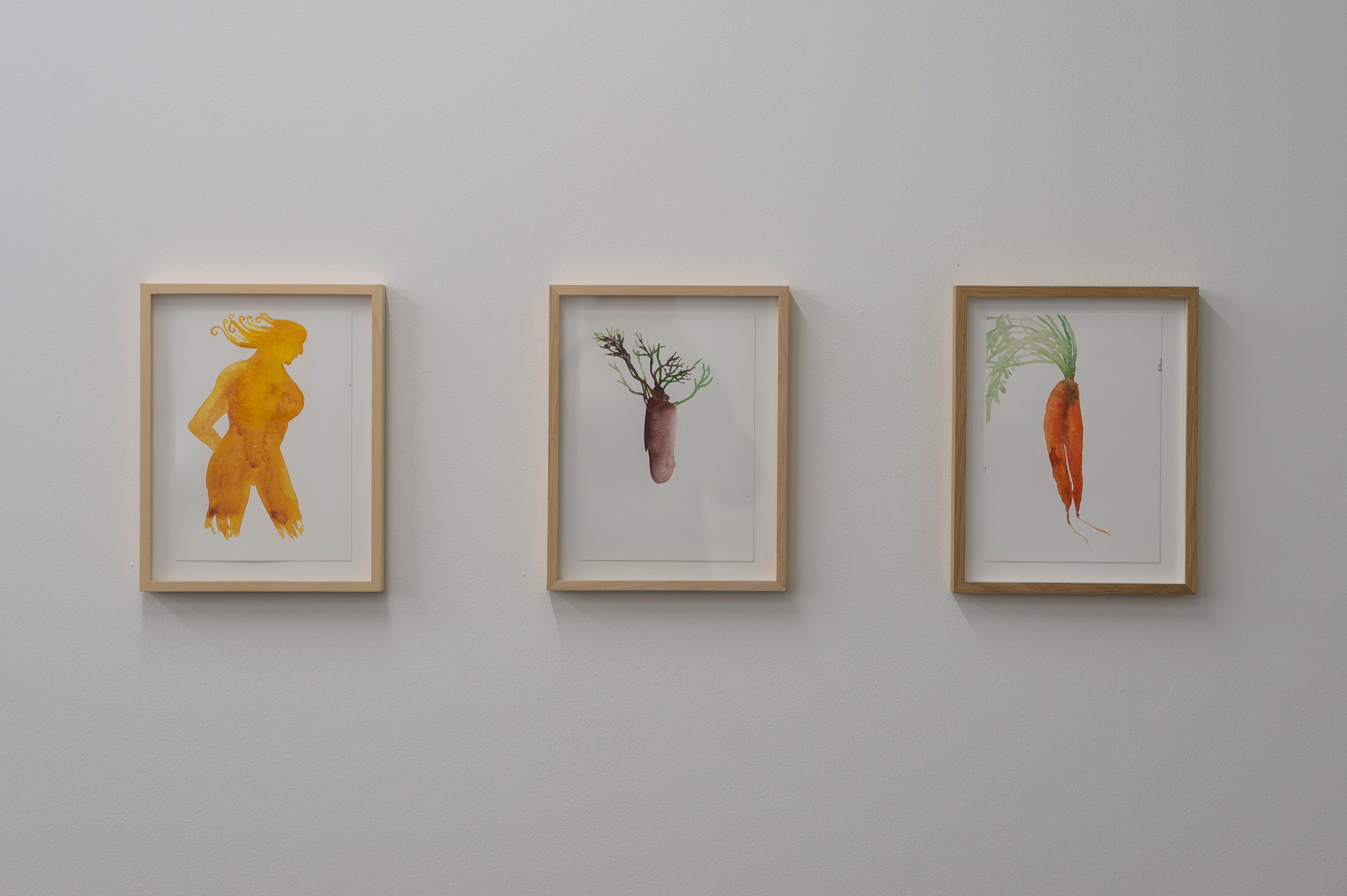 «Karotte», «Rübe», «Jaune» – so heissen diese Aquarelle auf Papier von rechts nach links.