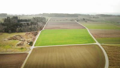 Die Gemeindeversammlung Uesslingen-Buch genehmigt die Umzonung dreier Felder nördlichvon Hinterhorbenin eine Kiesabbauzone. (Bild: Andrea Stalder)