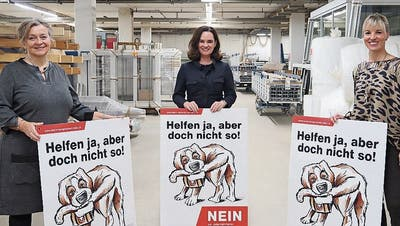Kathrin Bünter, Kristiane Vietze und Diana Gutjahr engagieren sich überparteilich gegen die Konzernverantwortungsinitiative. (Bild: ek)