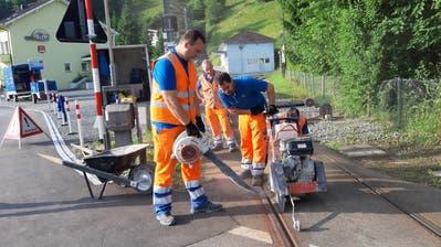 Gleisarbeiten auf einer Strecke der Appenzeller Bahnen. Vom 2. bis 18. November werden die Gleise der Bergbahn Rheineck-Walzenhausen saniert. (Bild: AB)