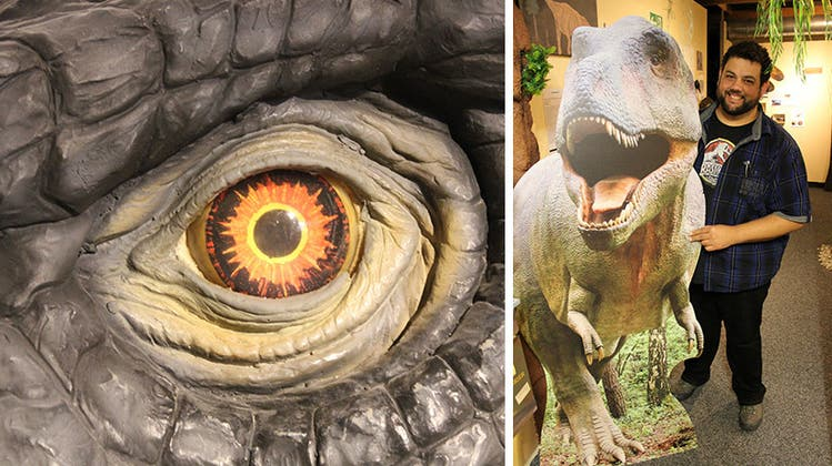 Am Jurasüdfuss soll ein «Jurassic Park» entstehen