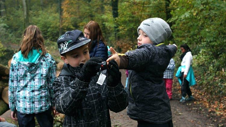 Beim Matheunterricht im Wald dient der eigene Arm als Messband
