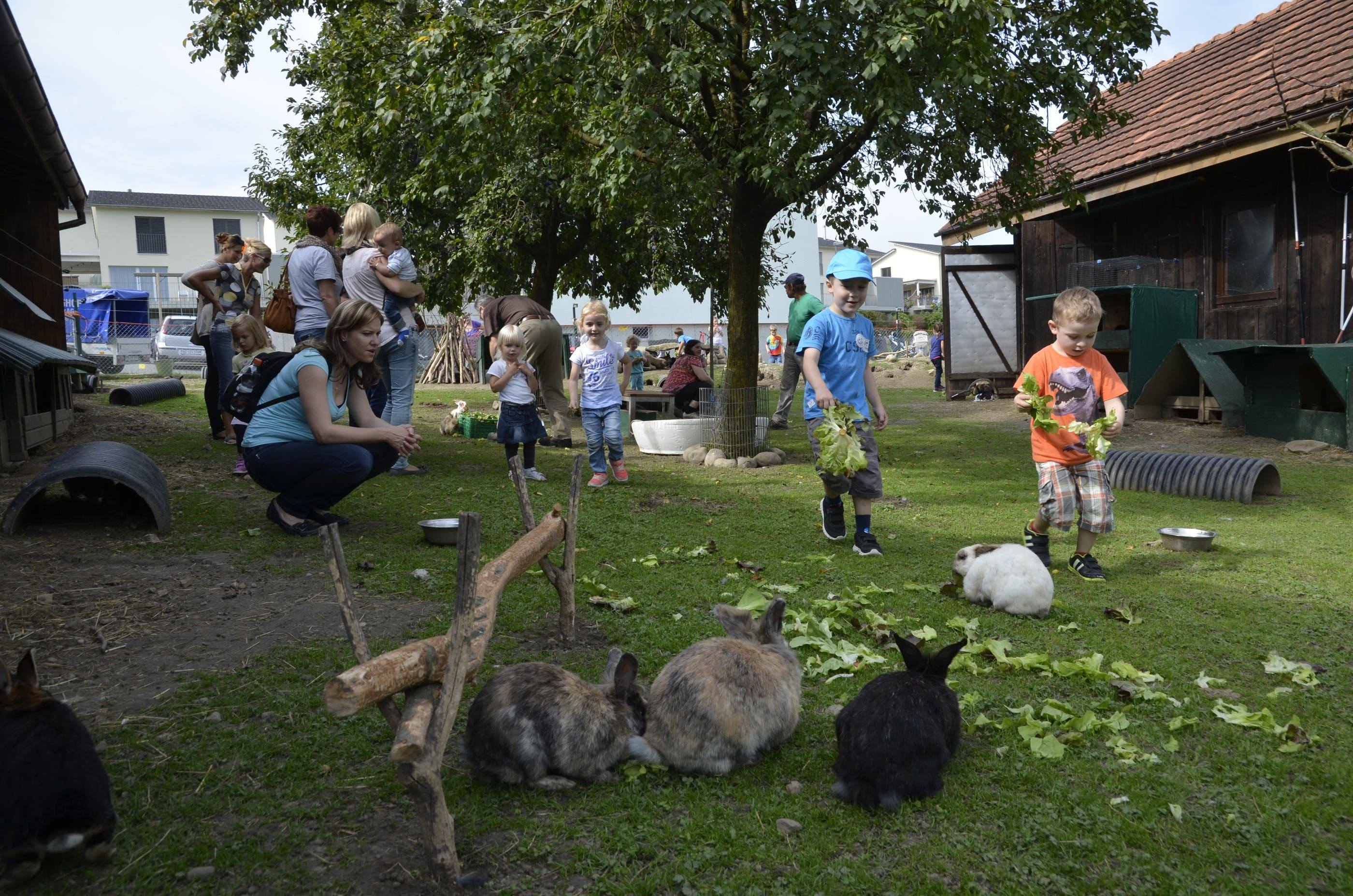 Schlachtet kaninchen frau Finden Mädchen