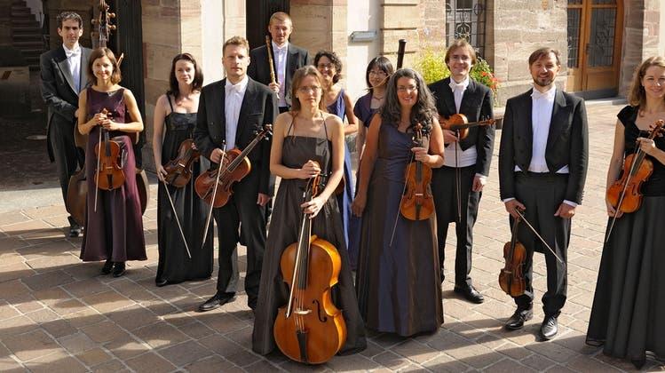Das Barockorchester Capriccio gastiert im Olsberger Kloster