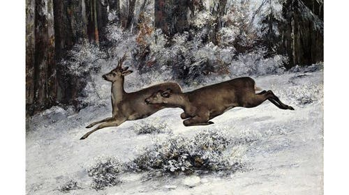Gibt es tatsächlich Parallelen zwischen Courbet, Doig und Wolf?