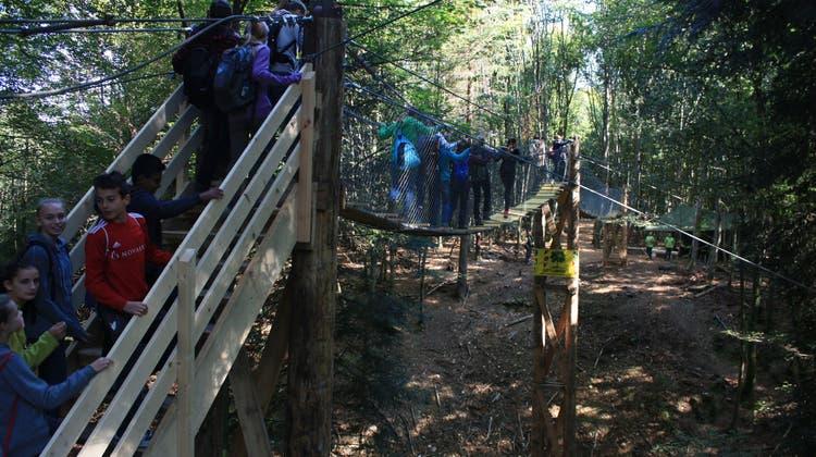 Waldparcours mit Hängebrücke ist Herzstück der Arisdorfer Waldtage