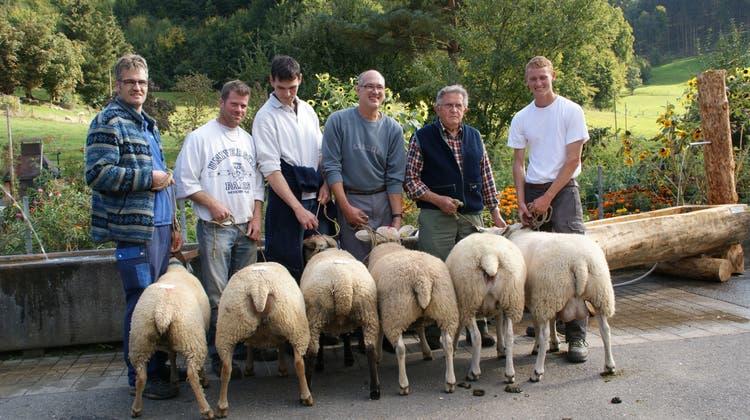 Welches Schaf gibt das beste Gigot im Tal?