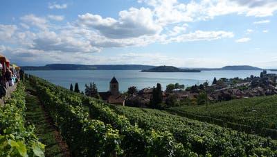 Vereinsreise Solothurn und Bielersee