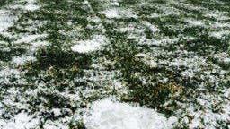 Kein Spiel heute in Vaduz – zu viel Schnee