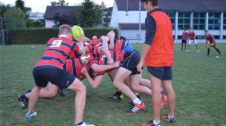 Drei Europameister hat dieser Rugby-Club in seinen Reihen