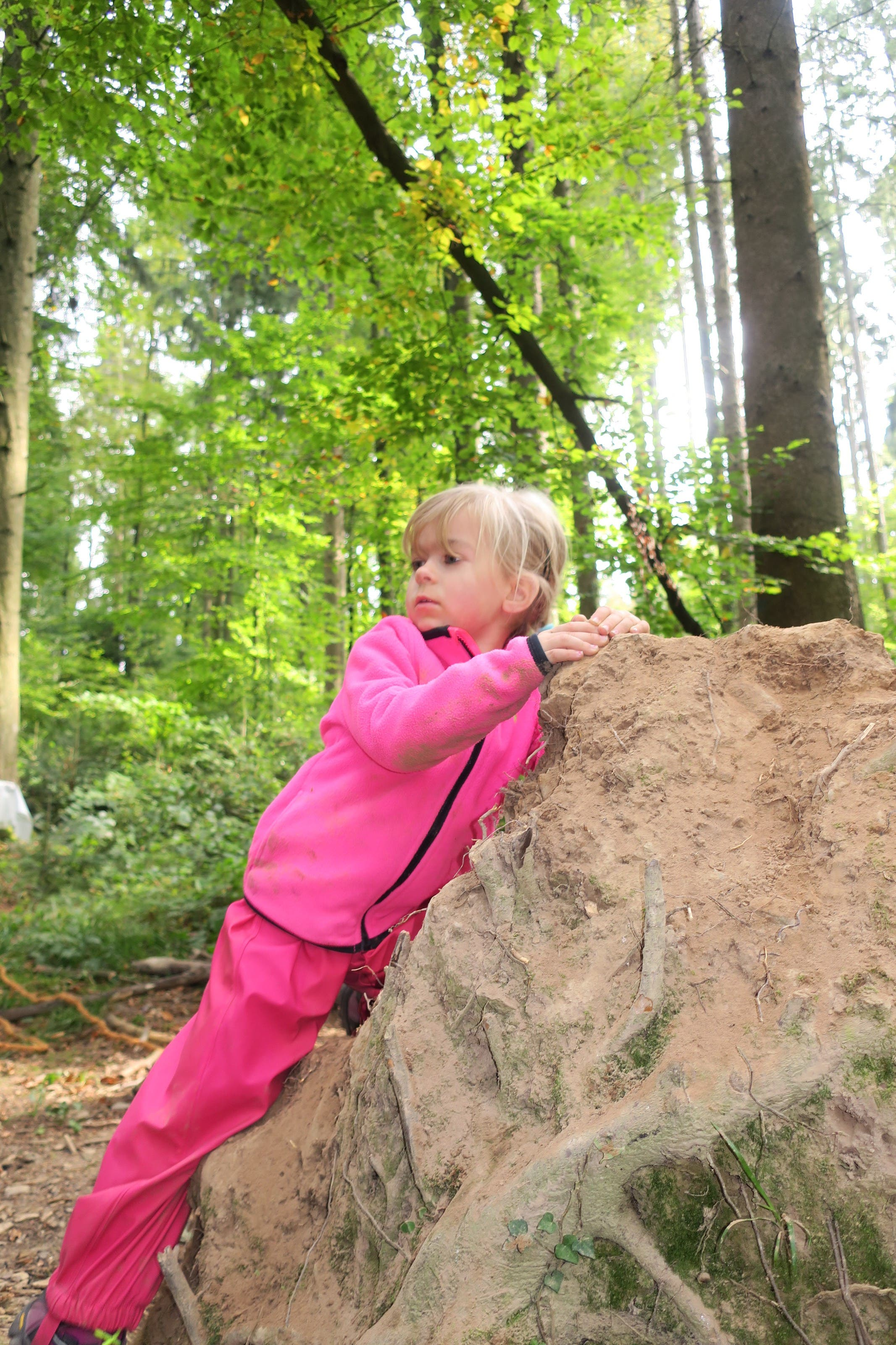 Wald-Erlebnis-Woche, organisiert vom Elternverein Geroldswil Wald-Erlebnis-Woche, organisiert vom Elternverein Geroldswil