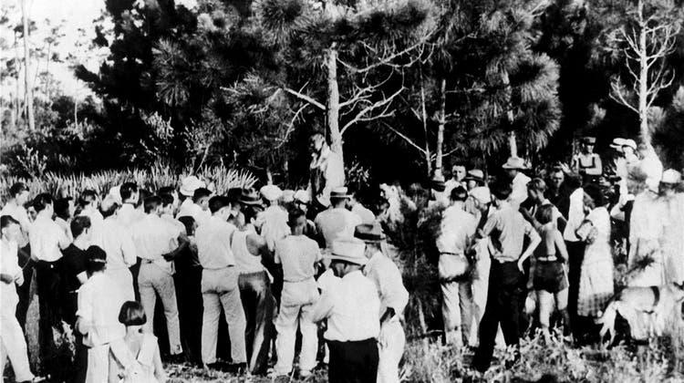 Im Schatten des Galgenbaums: Die lange Geschichte vom amerikanischen Rassismus