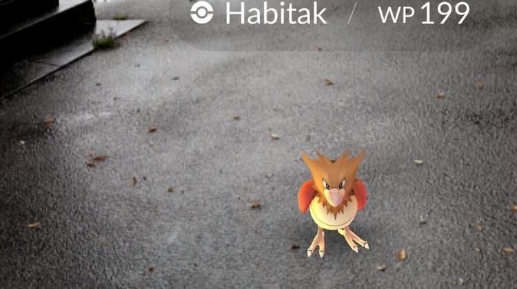 Smartphone-Spiel Pokémon Go erobert auch die Stadt Olten